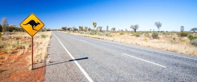 australien straße schild känguru fotolia 87450627