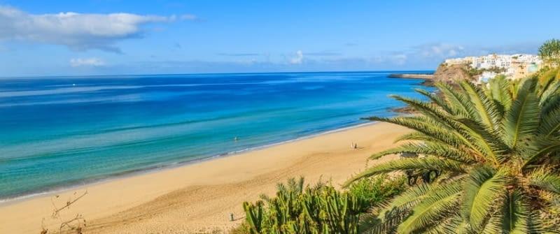 fuerteventura kanaren spanien strand meer palmen fotolia 73546351
